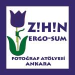 zihinergo-zihin_ergo_sum-amblem