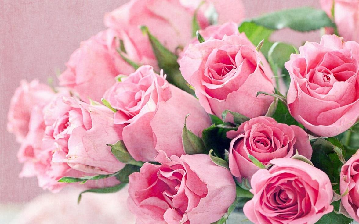 Fresh flowers bouquet of pink roses hd desktop backgrounds free fresh flowers bouquet of pink roses hd desktop backgrounds free download 16801050 izmirmasajfo