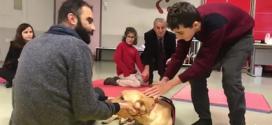 Aralık 2018: İstanbul şubemizde bir ay sürecek köpekle terapi eğitimi başladı.